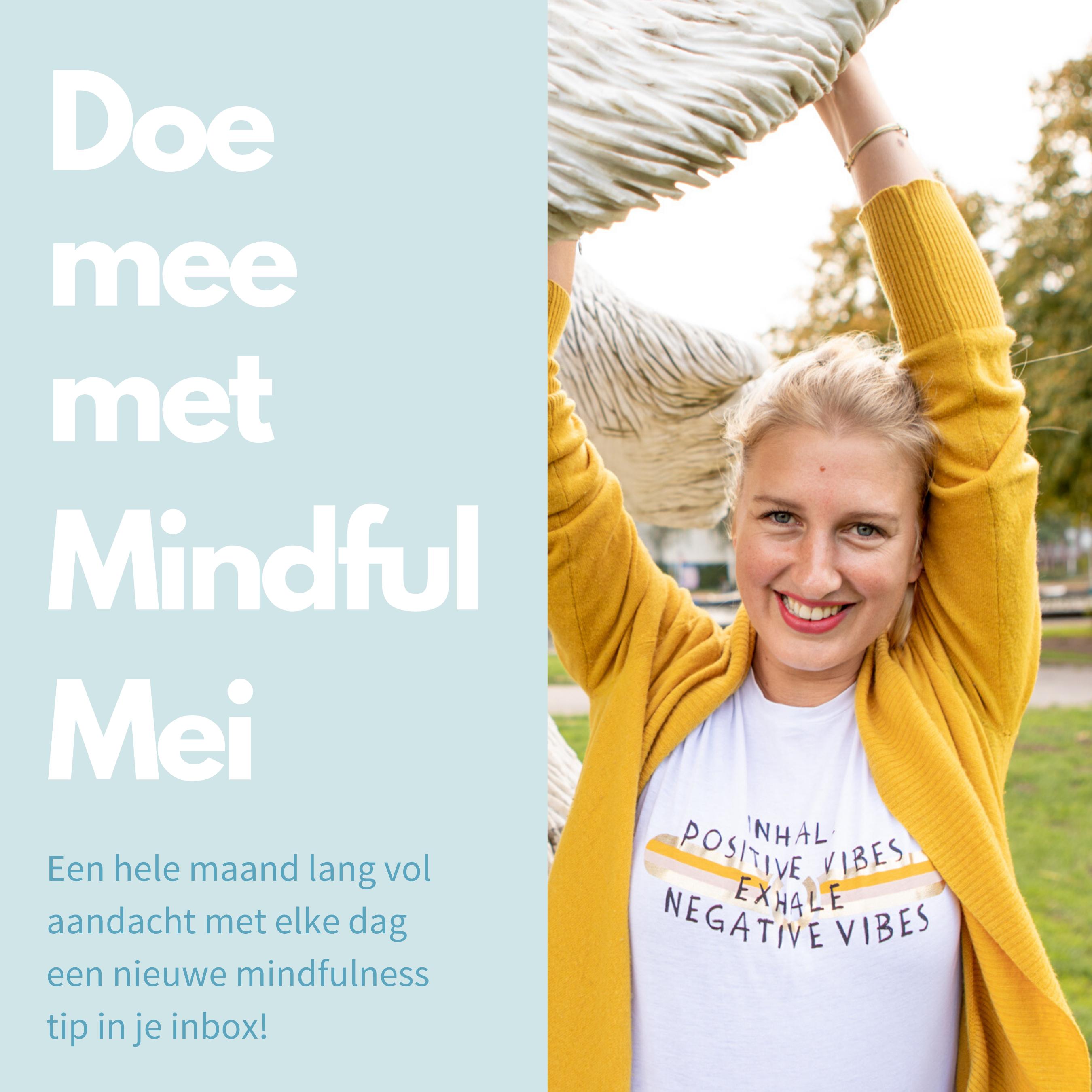 Mindful Mei VIP